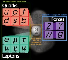 standard model, with Higgs boson