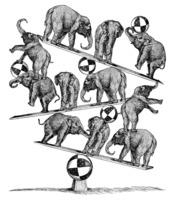Leigh Guldig: GOP balance act