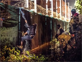 Refugee climbs Eurotunnel security fence