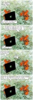 Tree Lobsters 745: Improper Fractions