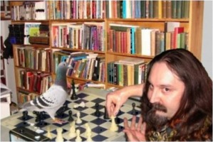 Chess with pigeon