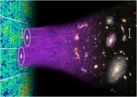 Detailed Universe