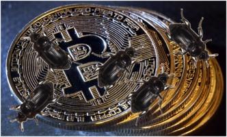 Bitcoin bugs
